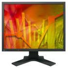 """LED monitor EIZO S2133-BK 21"""" LED monitor, 21"""", IPS, 1600x1200, 1500:1, 6ms, 420cd,m2, 1x DVI-D, D,SUB15, 1x  8-bit DP, 2xUSB, černý"""
