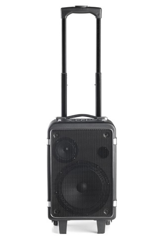 Reproduktory NGS WILD FUNKY Reproduktory, mono, 40W, USB, SD slot, Bluetooth, černé WILD FUNKY